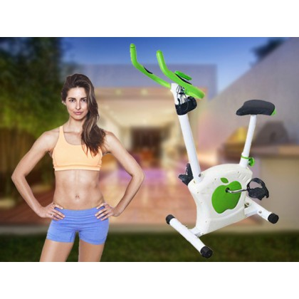 Premium Multi-Function Magnetic Exercise Bike Bicycle Super Silence Home Office Indoor Sport